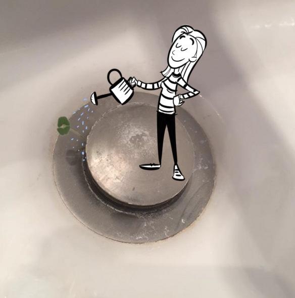 sink plant